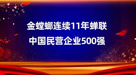 金螳螂连续11年蝉联中国民营企业500强